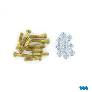 Cap Bolts Brass M3x15 10pcs (1/8) 220264